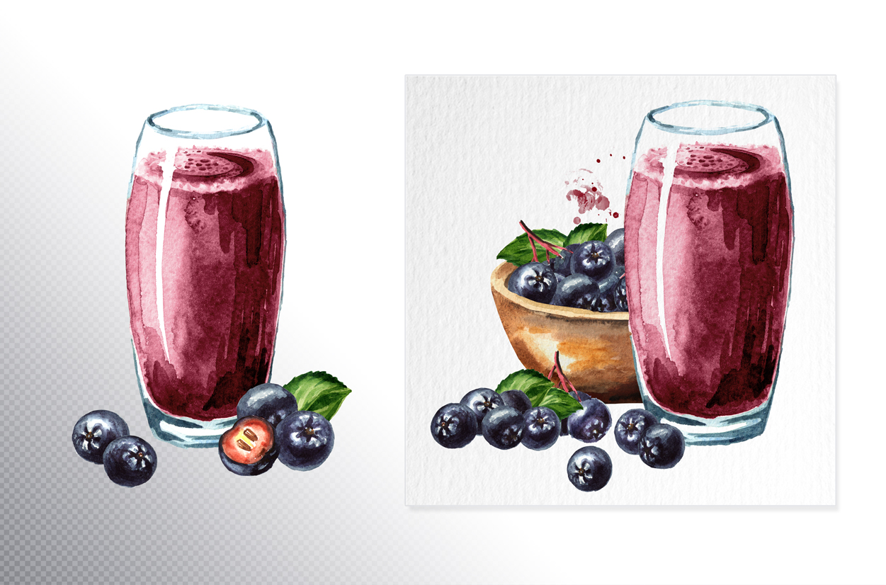 Aronia. Watercolor collection example image 8