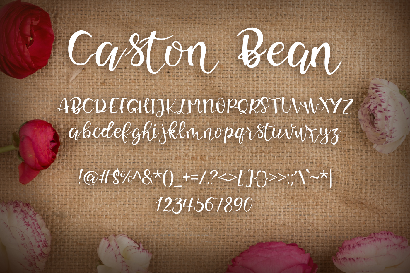 Caston Bean Font example image 2
