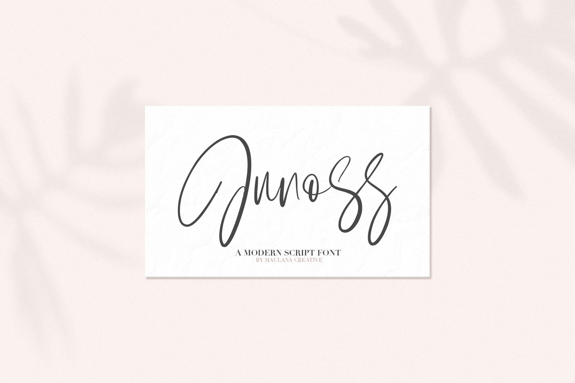 Junos Ridge - Handwritten Brush Font example image 2