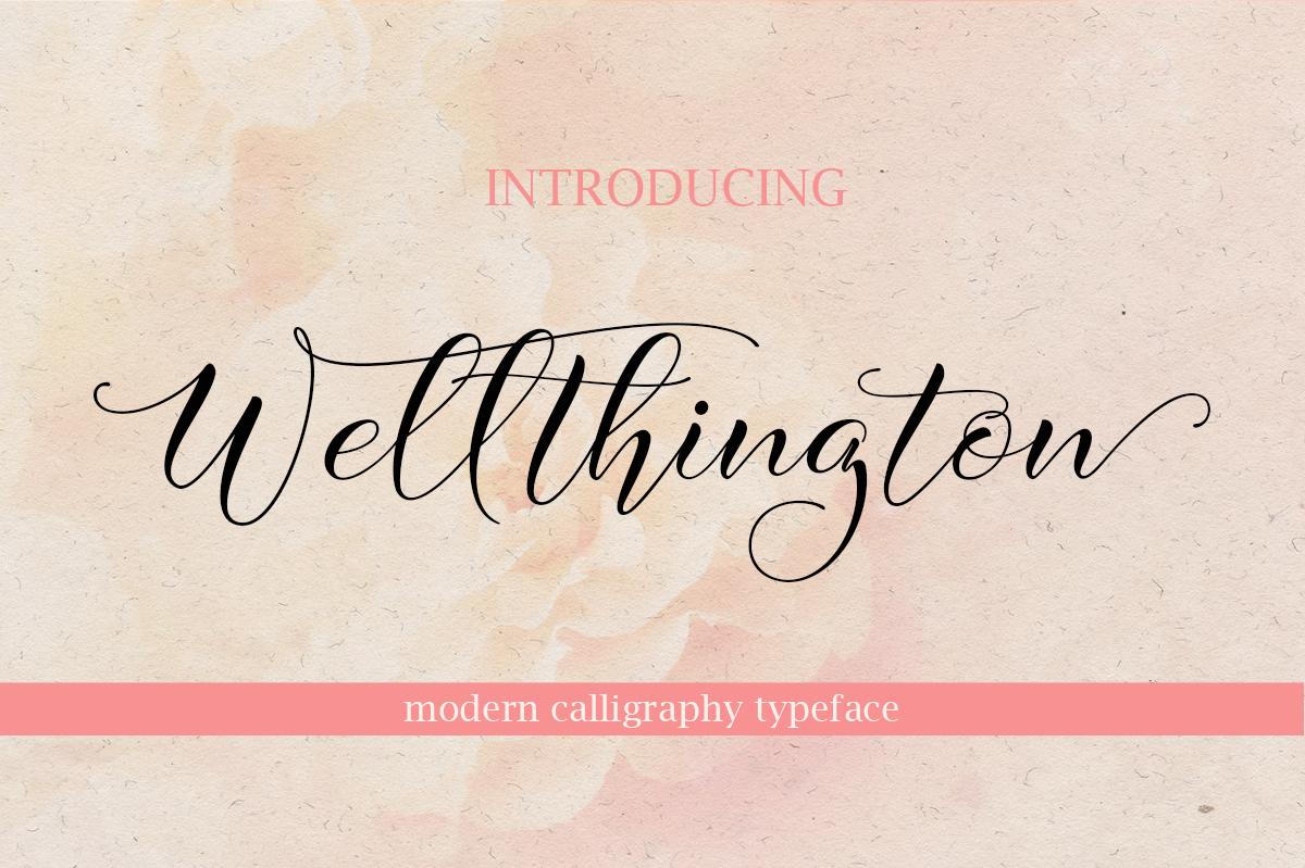 The Script Font Bundle example image 4