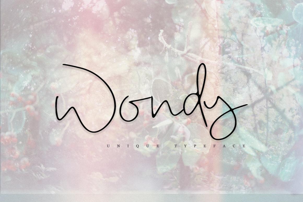 Wondy example image 1