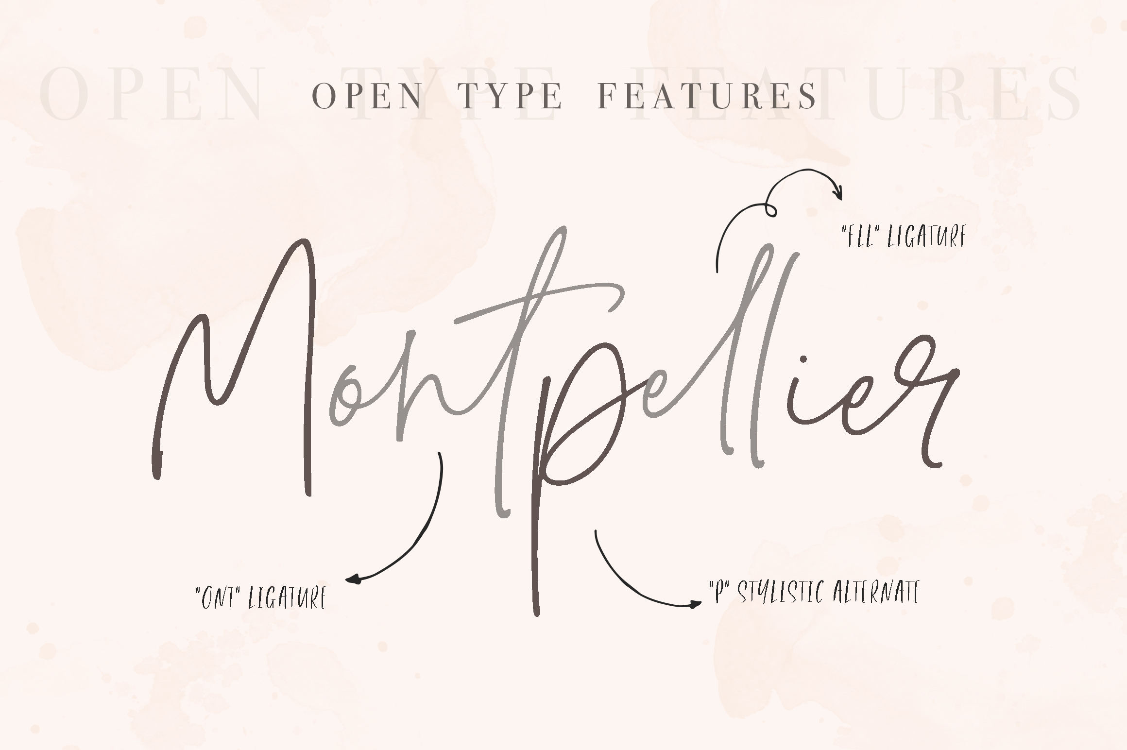 Montpellier | Signature Font example image 10