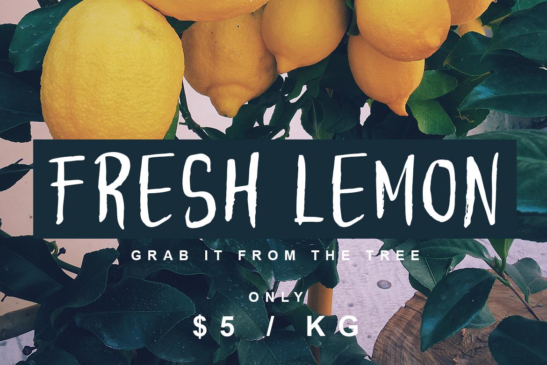 Lemonadut Fresh Font example image 2