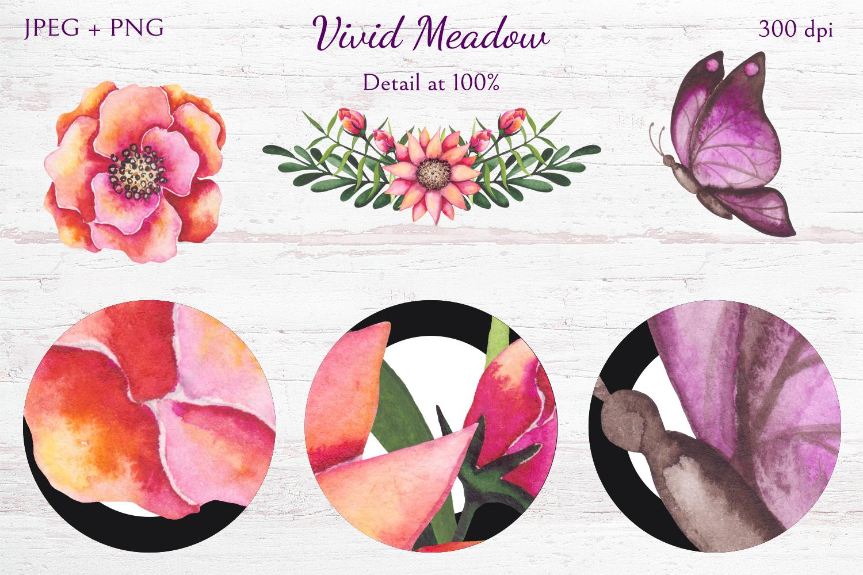 Vivid Meadow example image 11