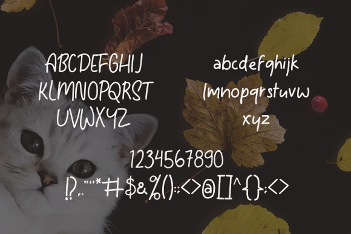 Tomcat - Cheerfull Day Font example image 5
