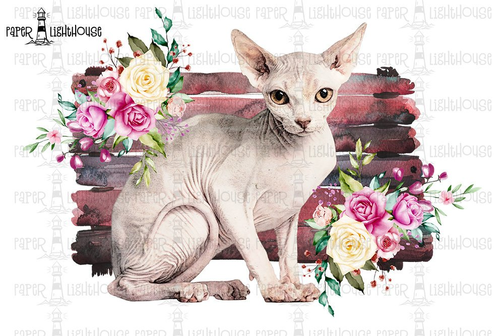 Sphynx Cat Sublimation Desing - Printable T-shirt Design example image 1