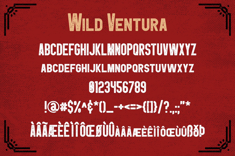 Wild Ventura Vintage Font example image 3