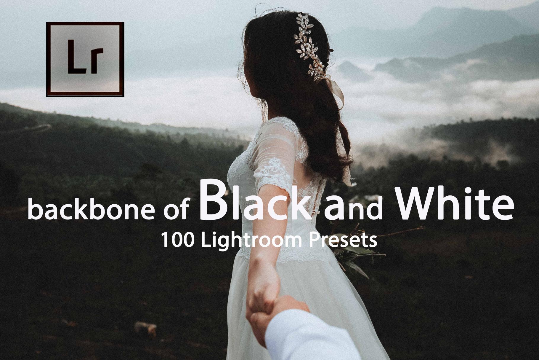 Backbone of Black and White Lightroom Presets example image 1