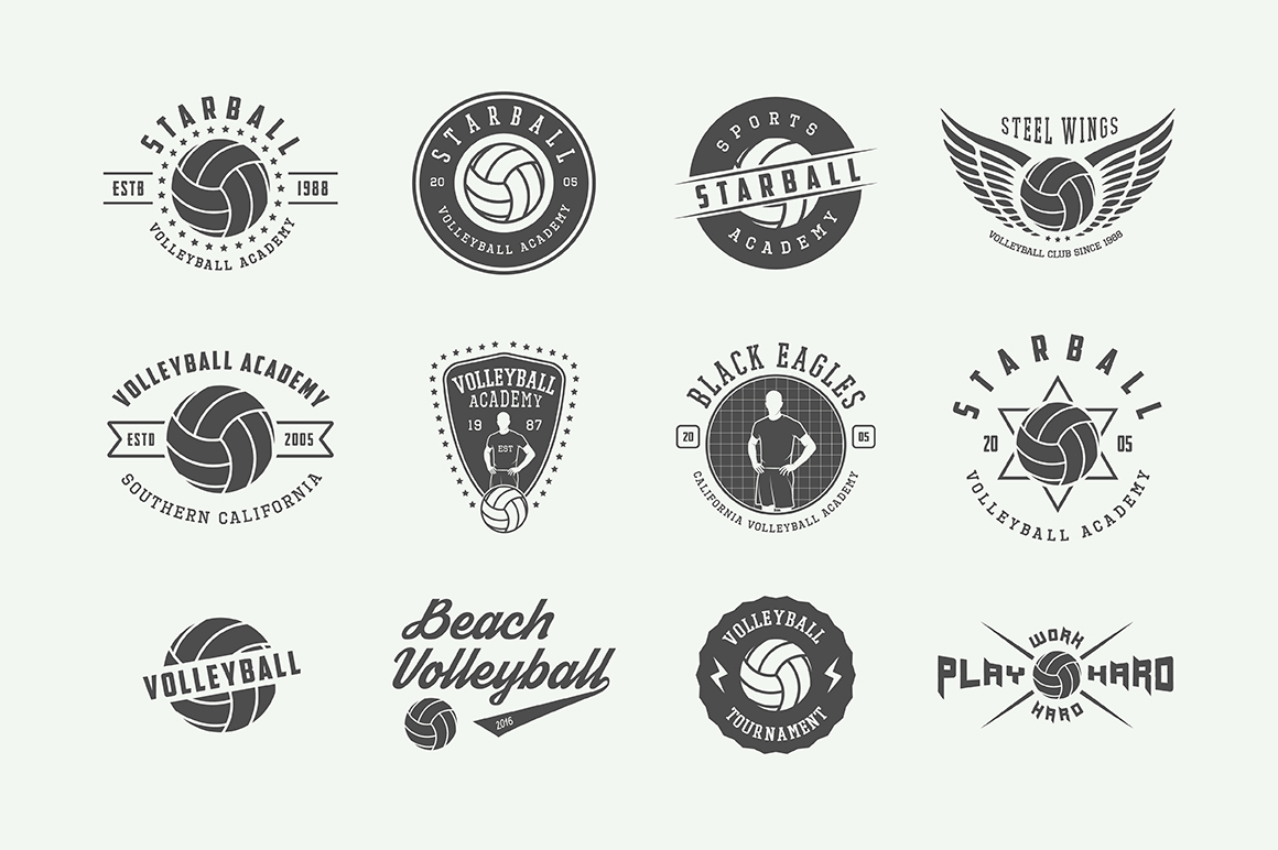 Set of 24 vintage volleyball emblems example image 2
