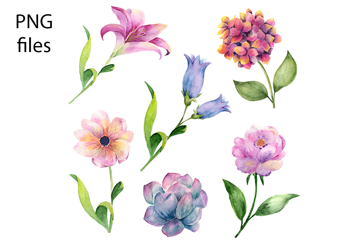 Watercolor Cactus and Flowers Clipart. example image 2