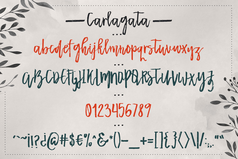 Carlagata example image 3