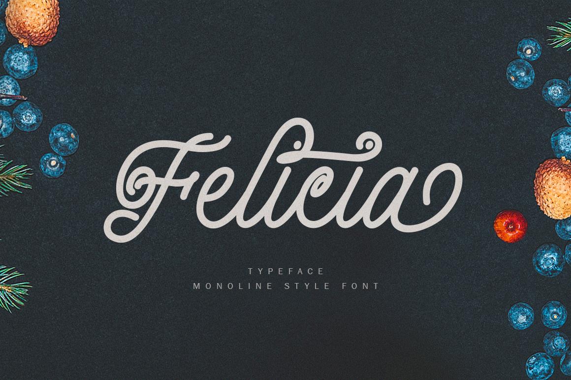 Felicia example image 1
