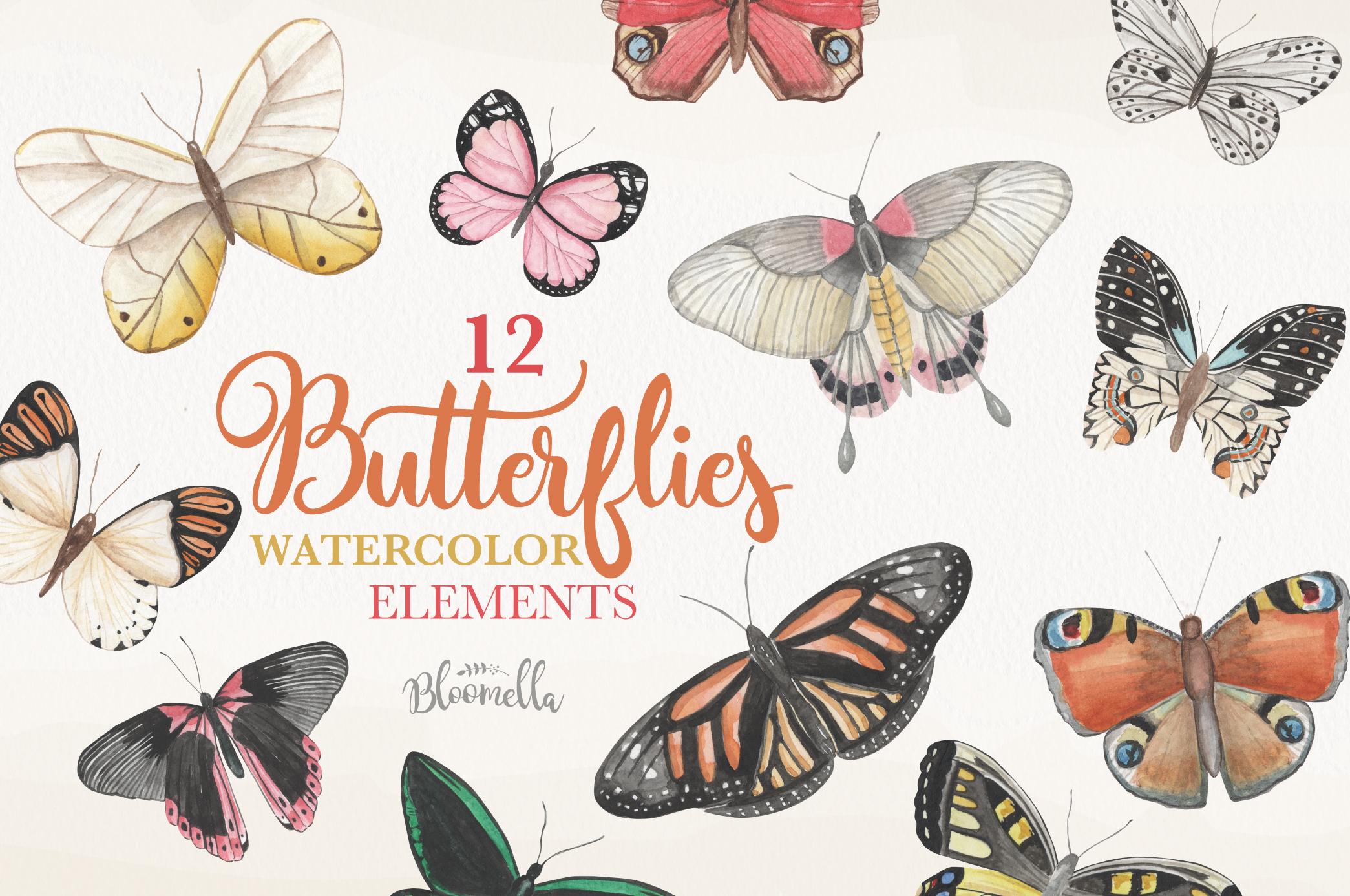 Butterfly Collection 12 Watercolor Clipart Elements Insect example image 1