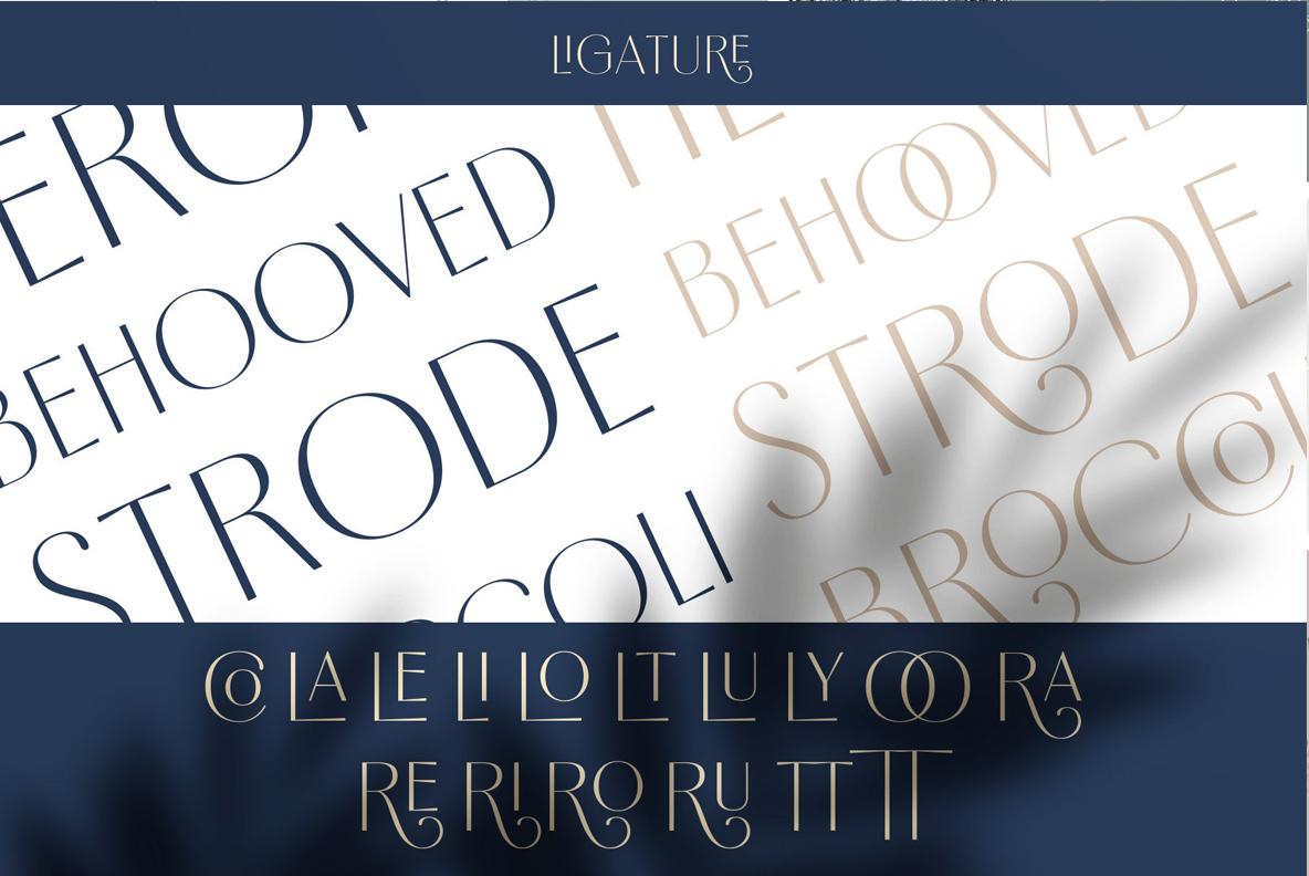 Borest - Elegant Roman Sans Serif example image 6