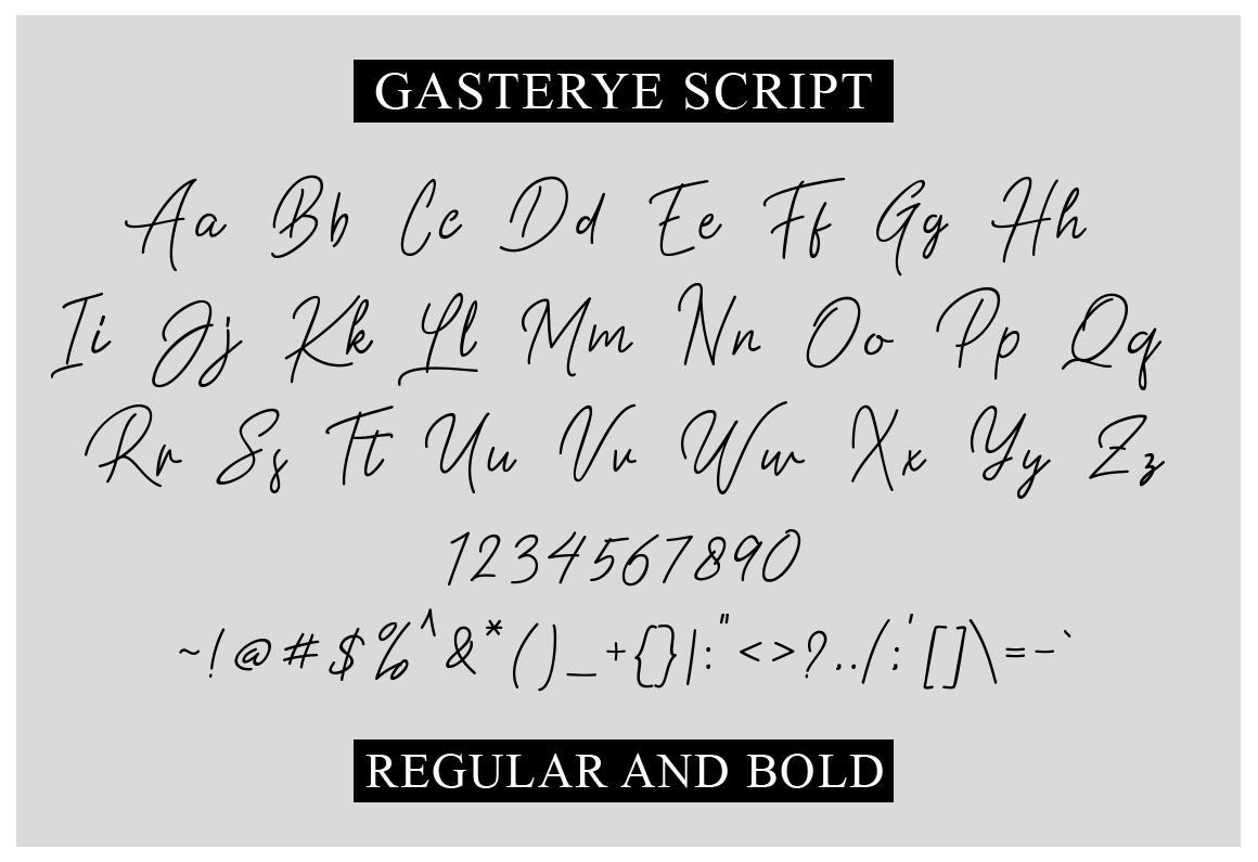 Gasterye Script example image 3