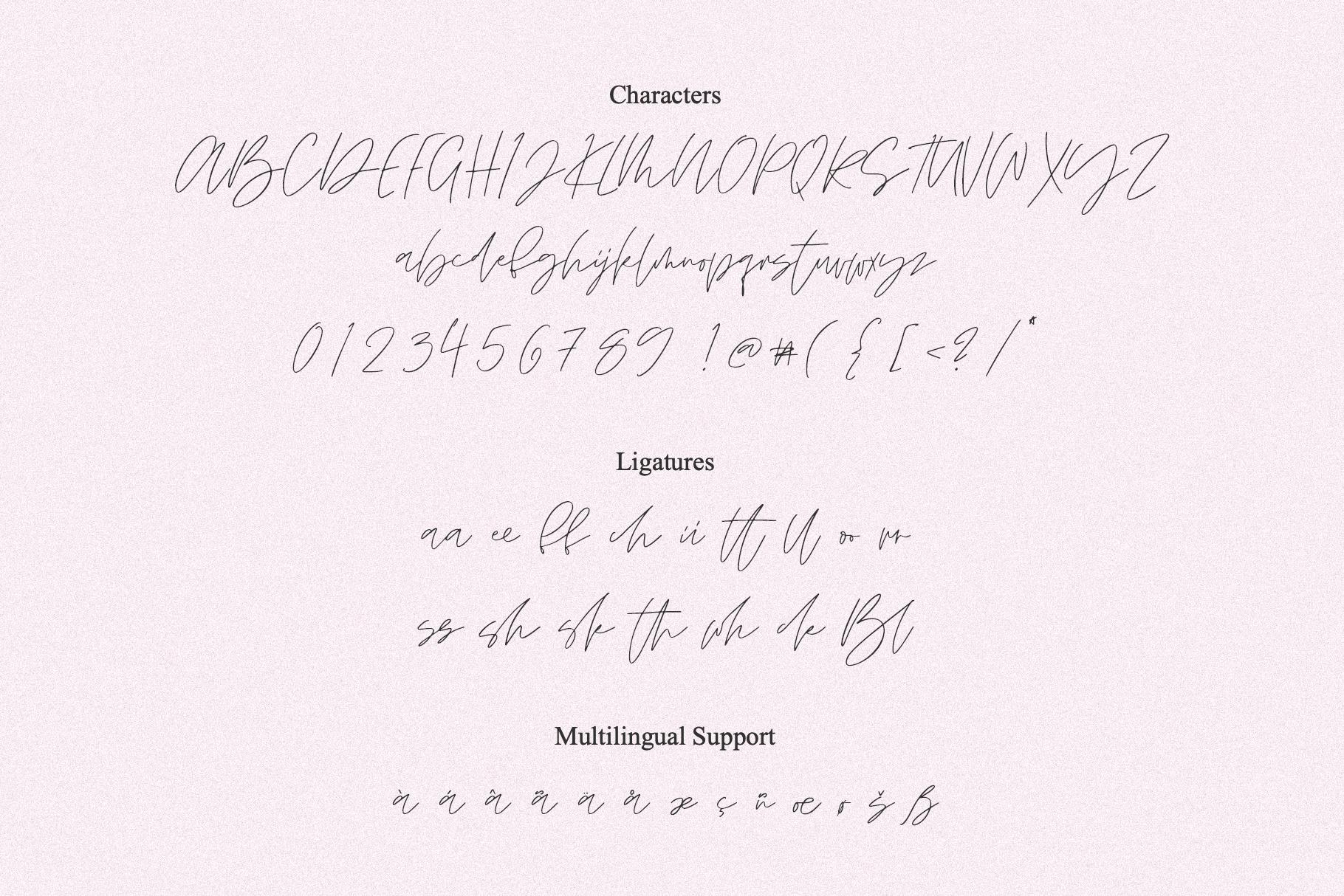 BLONDIE SCRIPT example image 8