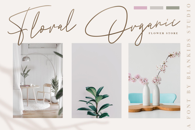 Andrea Belarosa - Beauty Font example image 3