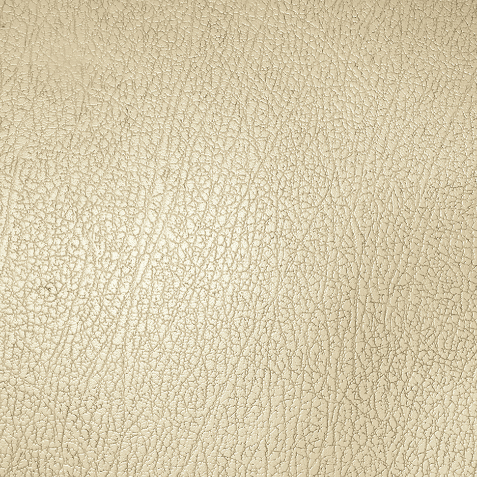 Leather Textures example image 3