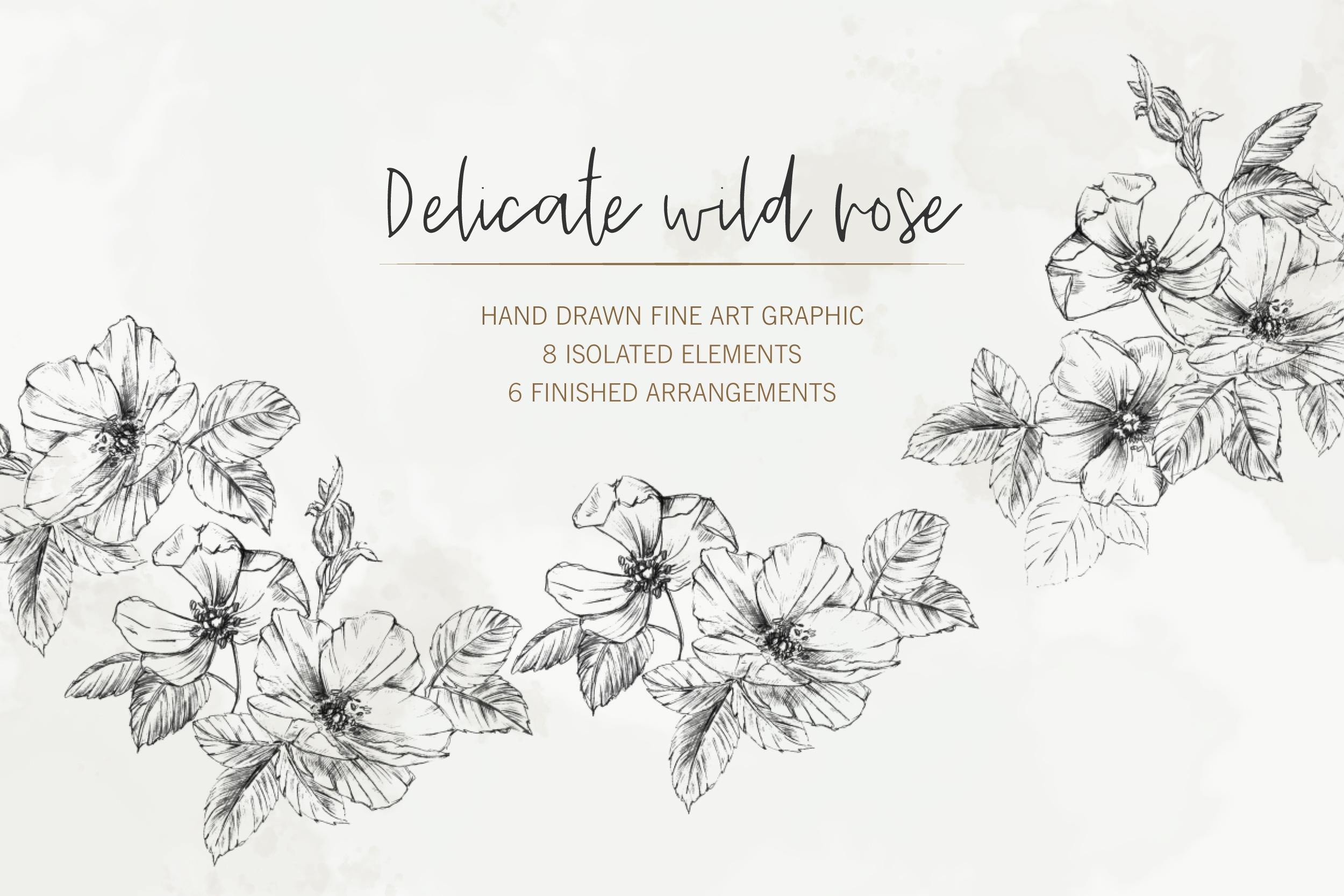 Hand Drawn Fine Art Graphic Images - Delicate wild rose. example image 1