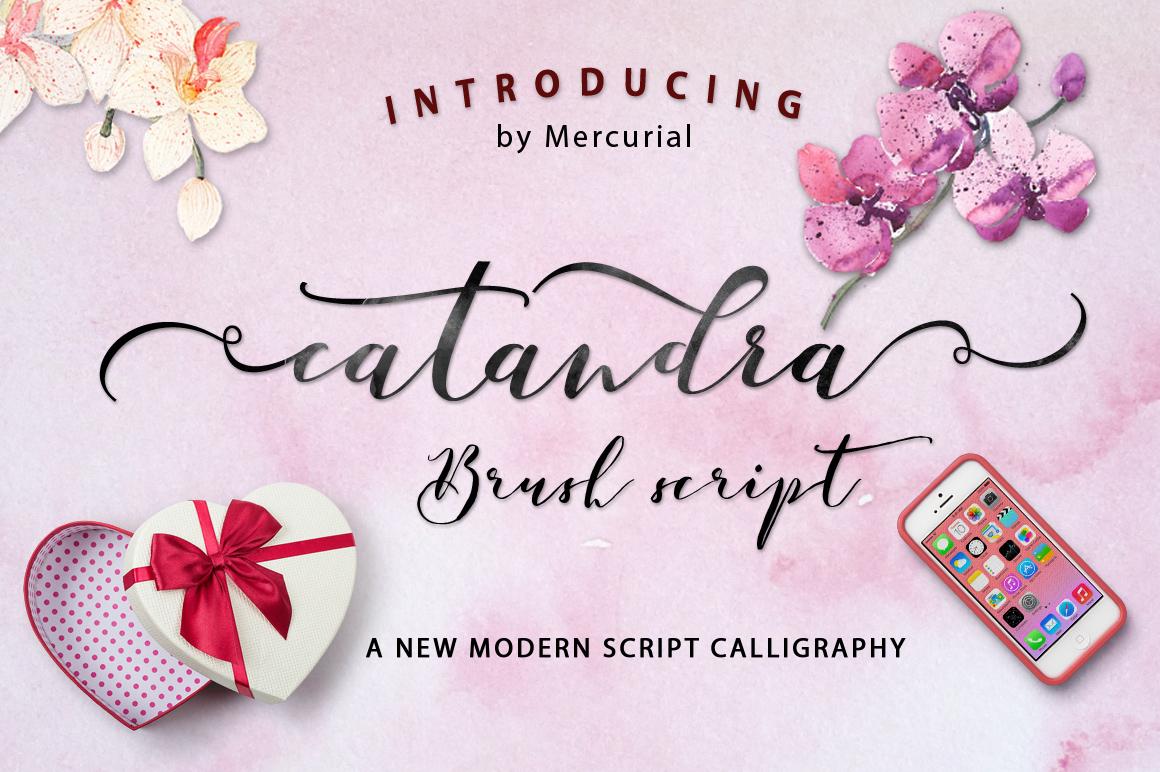 Catandra Script example image 1