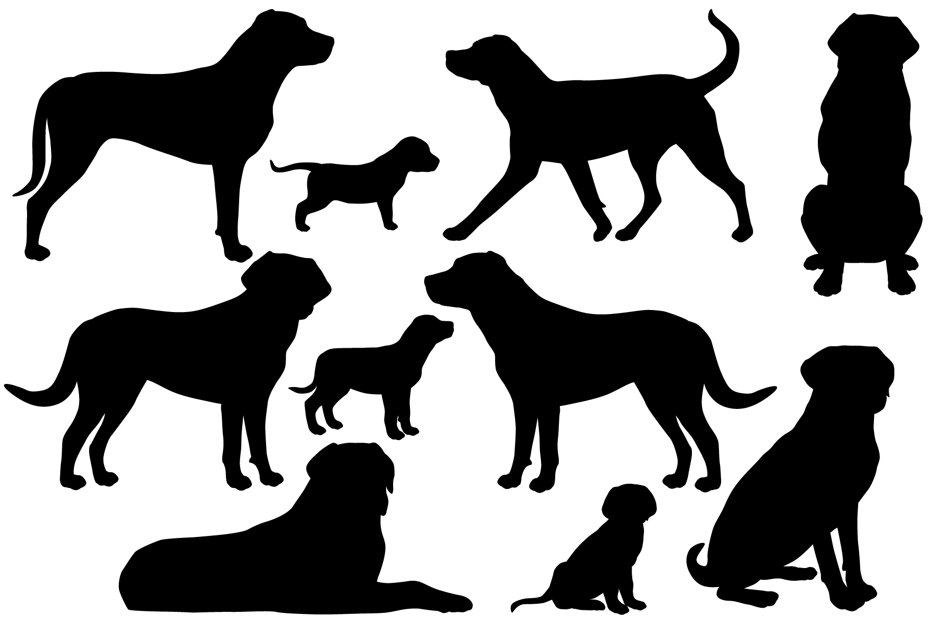 Greater swiss mountain dog silhouette example image 1