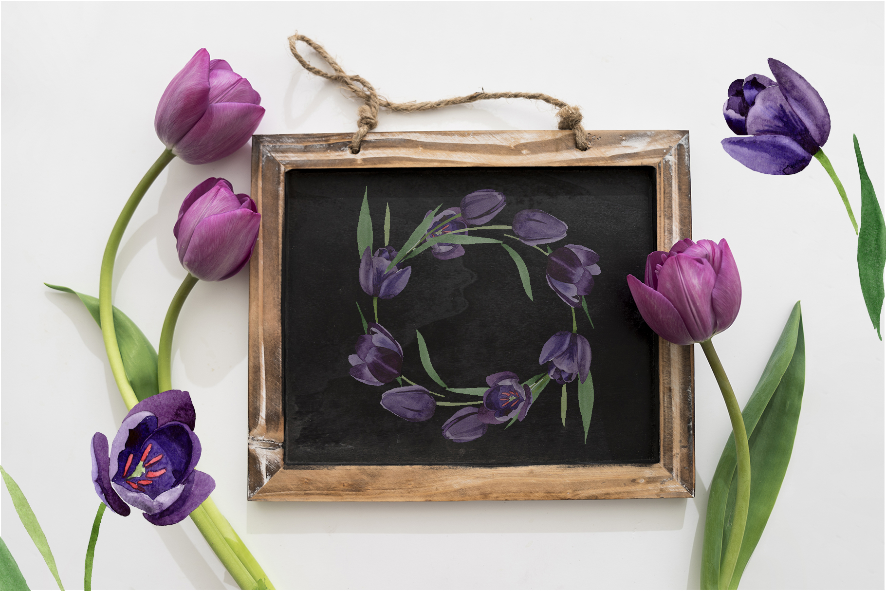 Wonderful black tulips PNG watercolor flower set example image 6