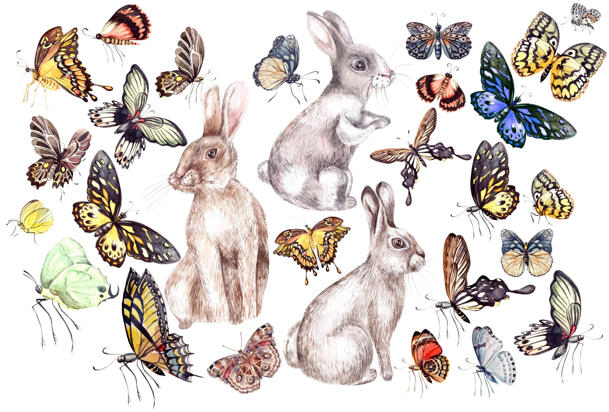 Hand Drawn Watercolor BUNDLE example image 7