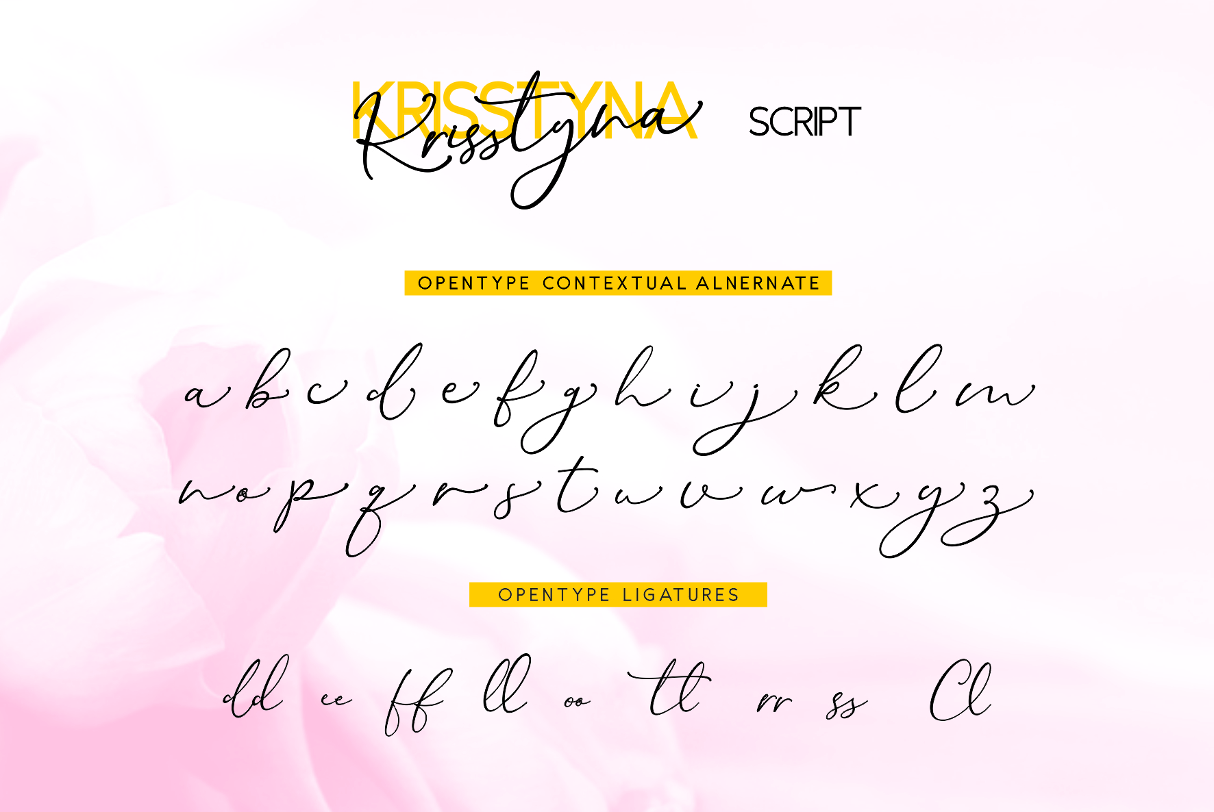 Krisstyna Font Duo example image 9