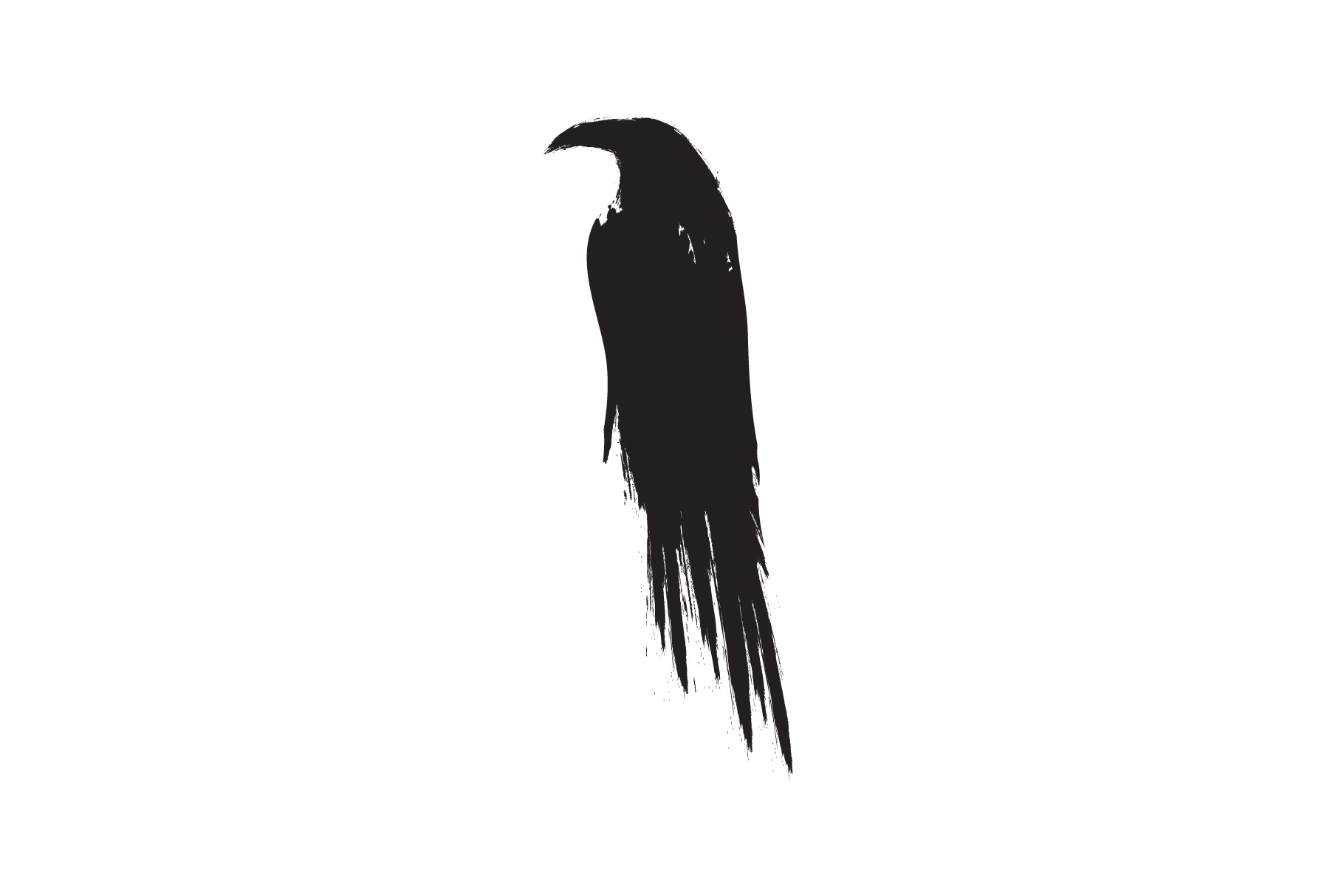Black raven crow body and wings. example image 3
