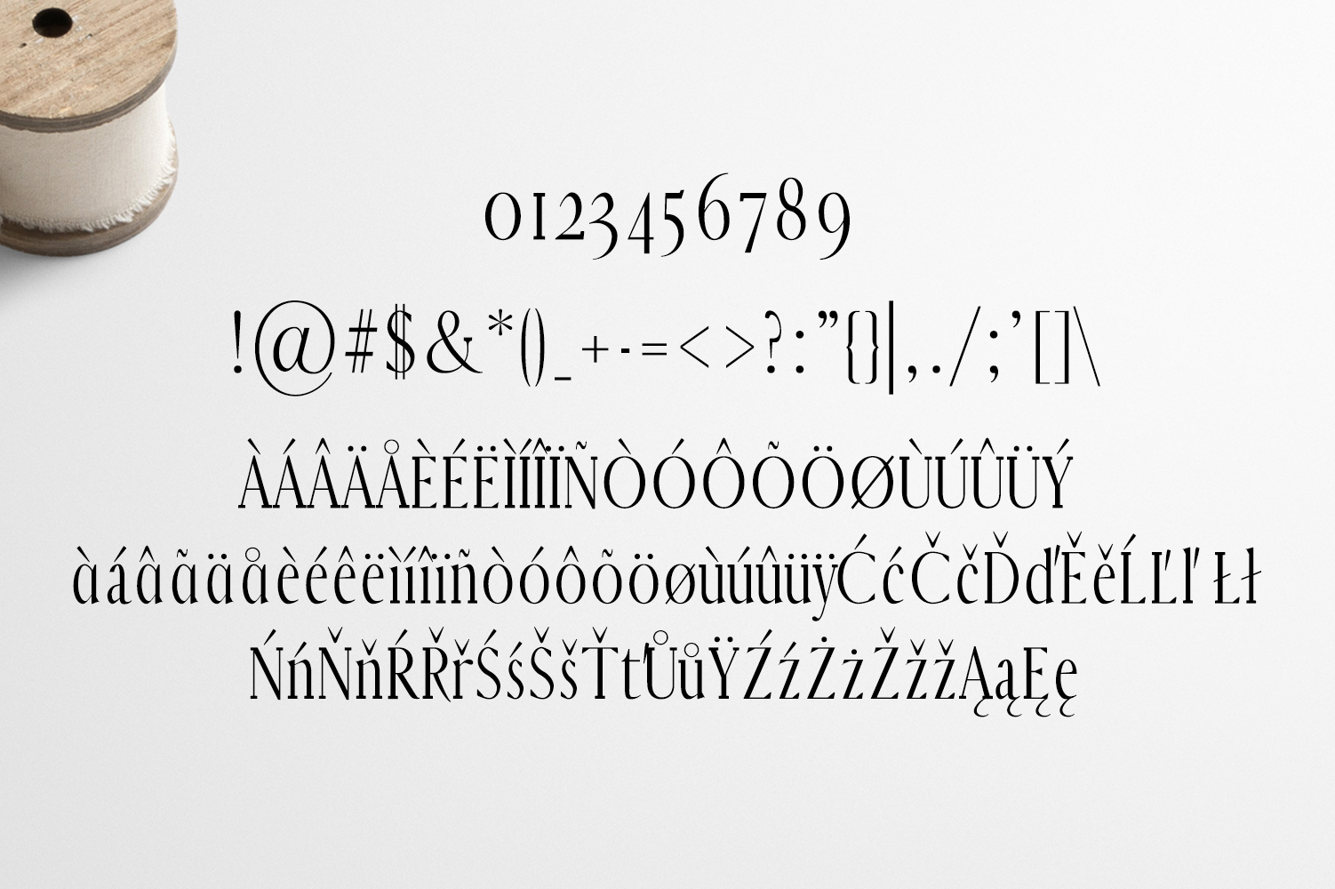 Earywn Serif 3 Font Family Pack example image 5