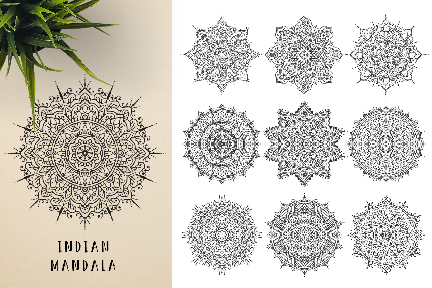 300 Vector Mandala Ornaments example image 9
