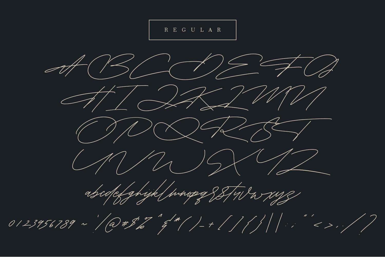Shaloems Handwritten Signature Font example image 9