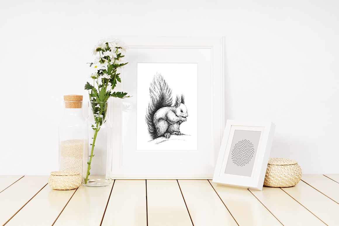 Hand drawn illustration with forest Squirrel example image 1
