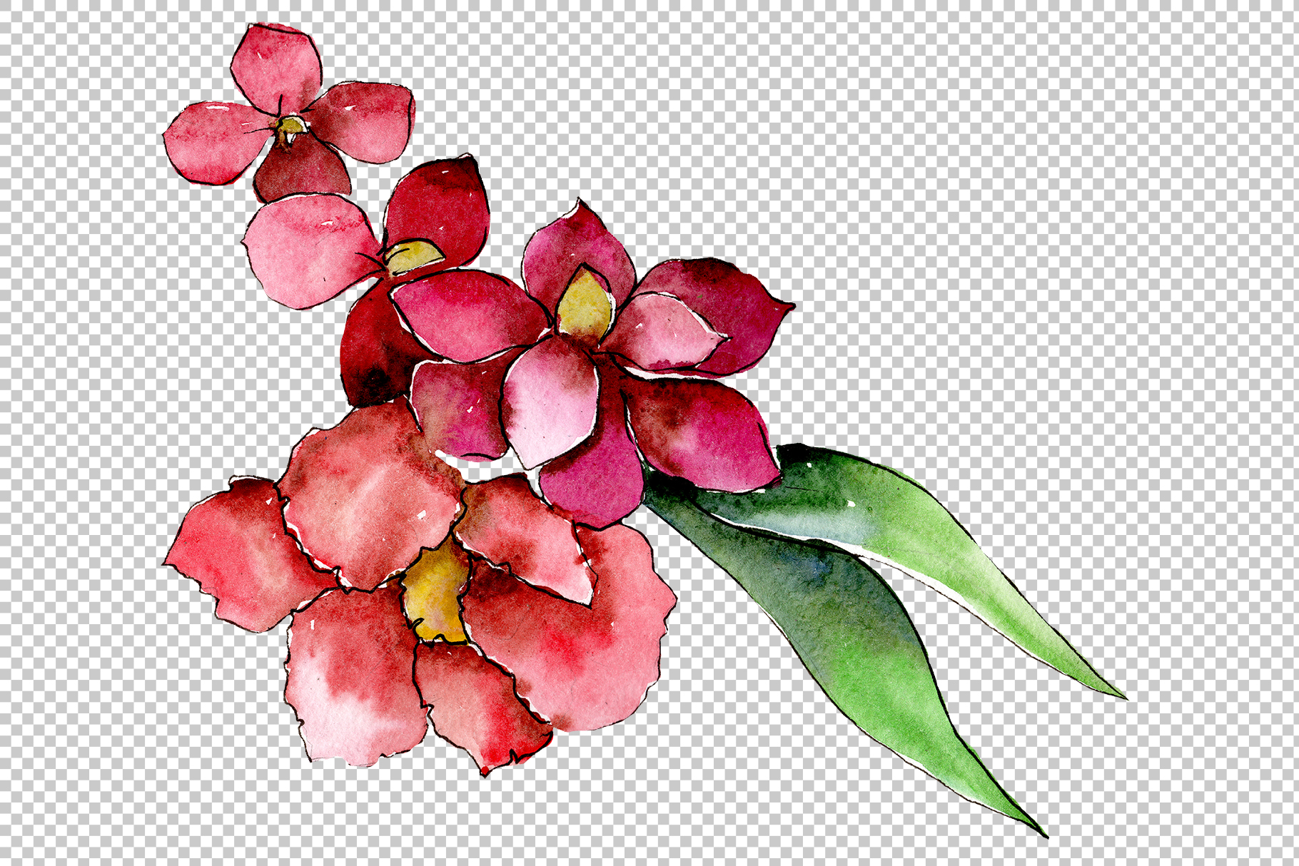 Bouquet of tropical colorful flower PNG watercolor example image 3