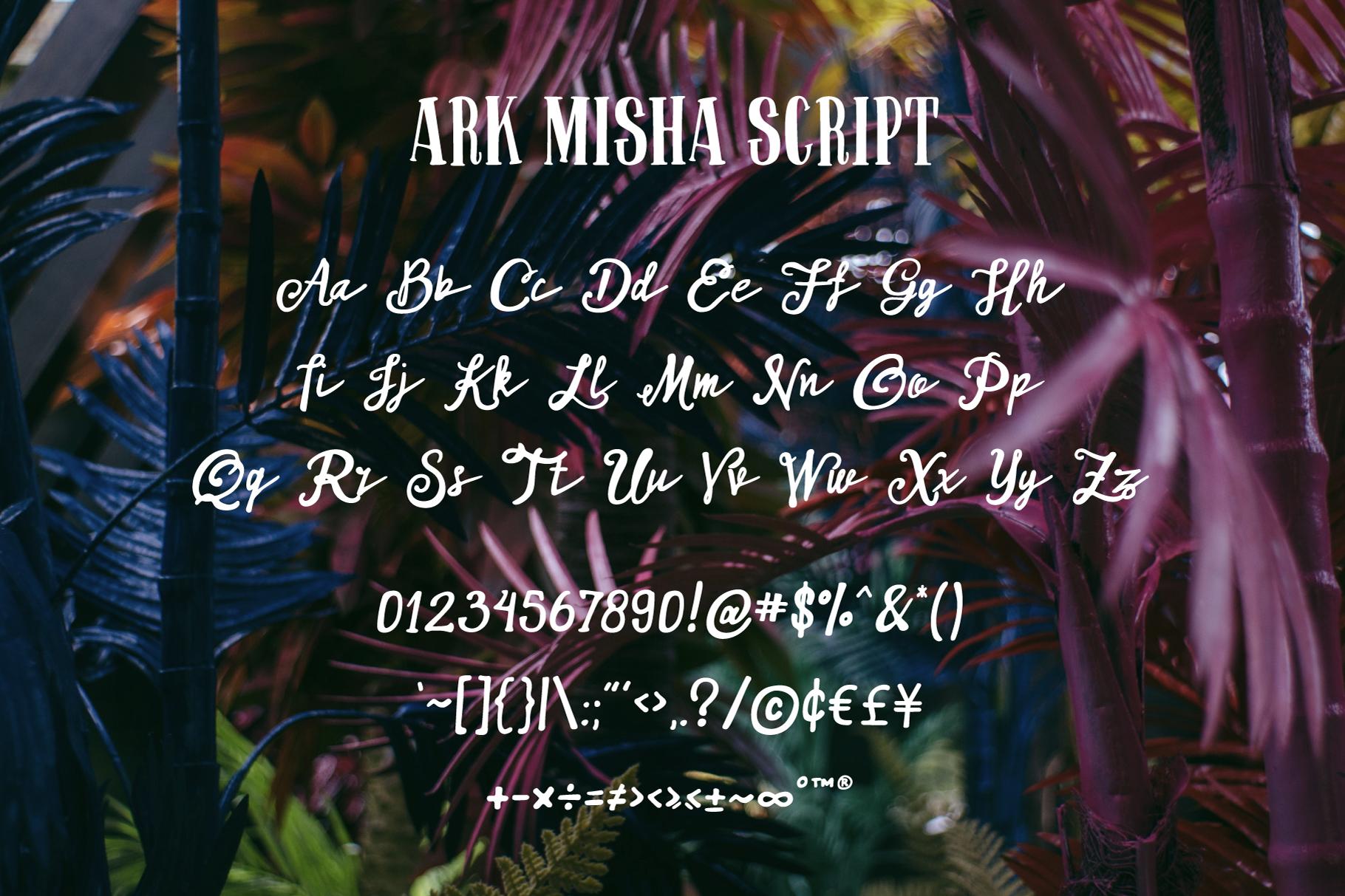 ARK Misha Font Duo example image 3