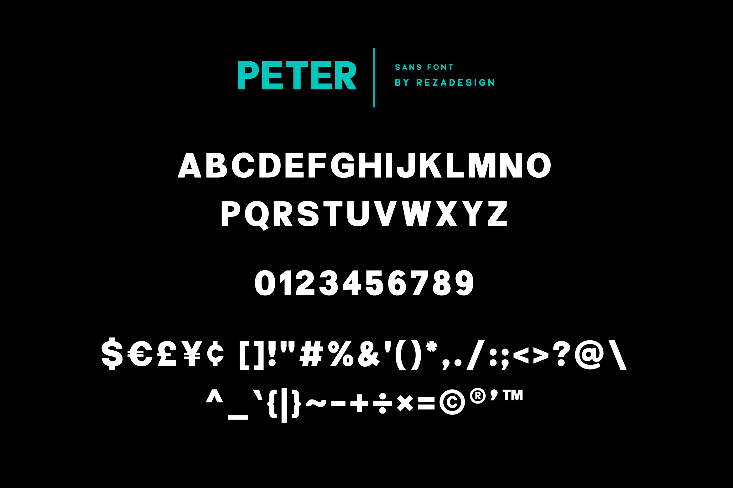 Peter Quincy - Font Duo example image 6