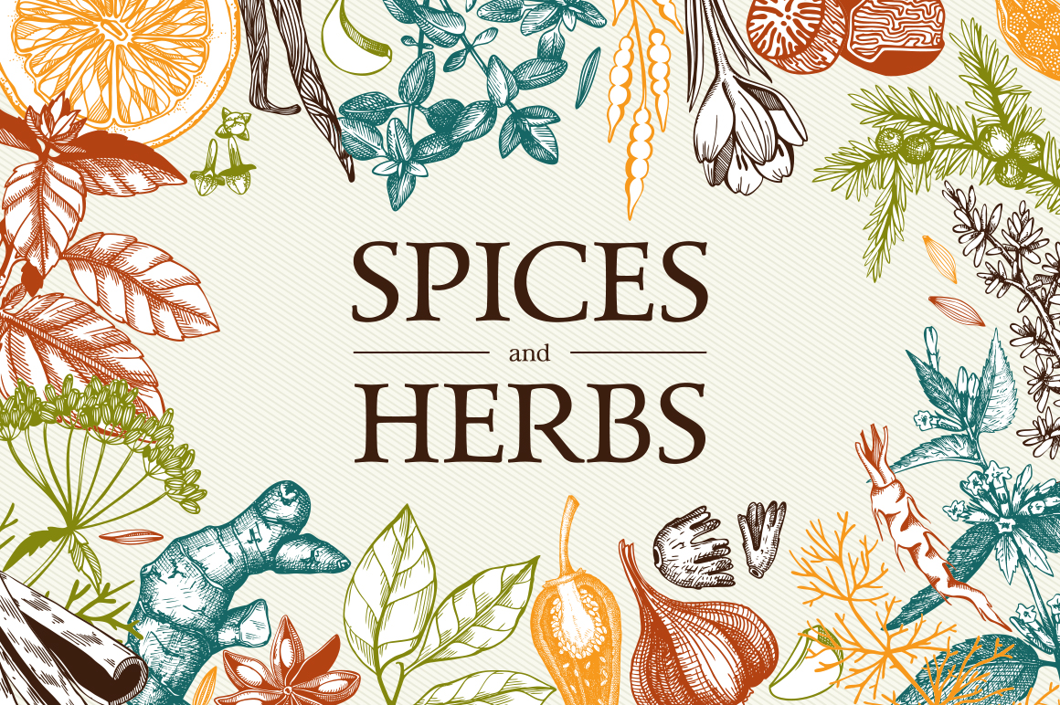 Ink Hand Drawn Spice Collection example image 1