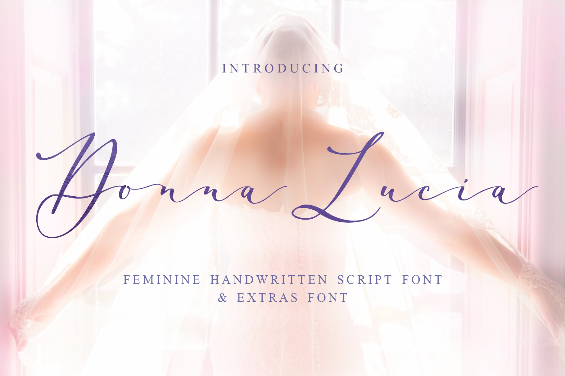 Donna Lucia font + Extras & Logo example image 1