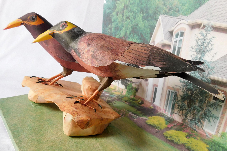 paper bird MAINA example image 2