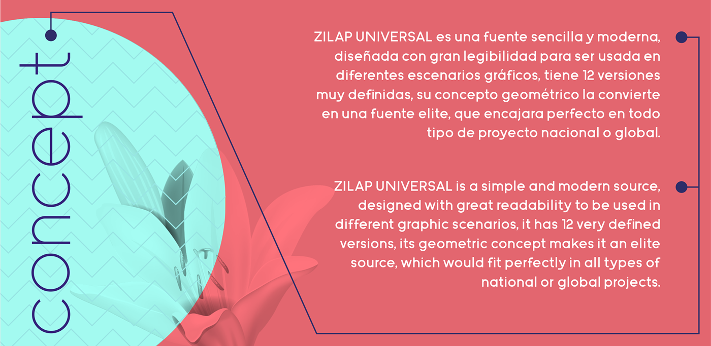 Zilap Universal example image 16