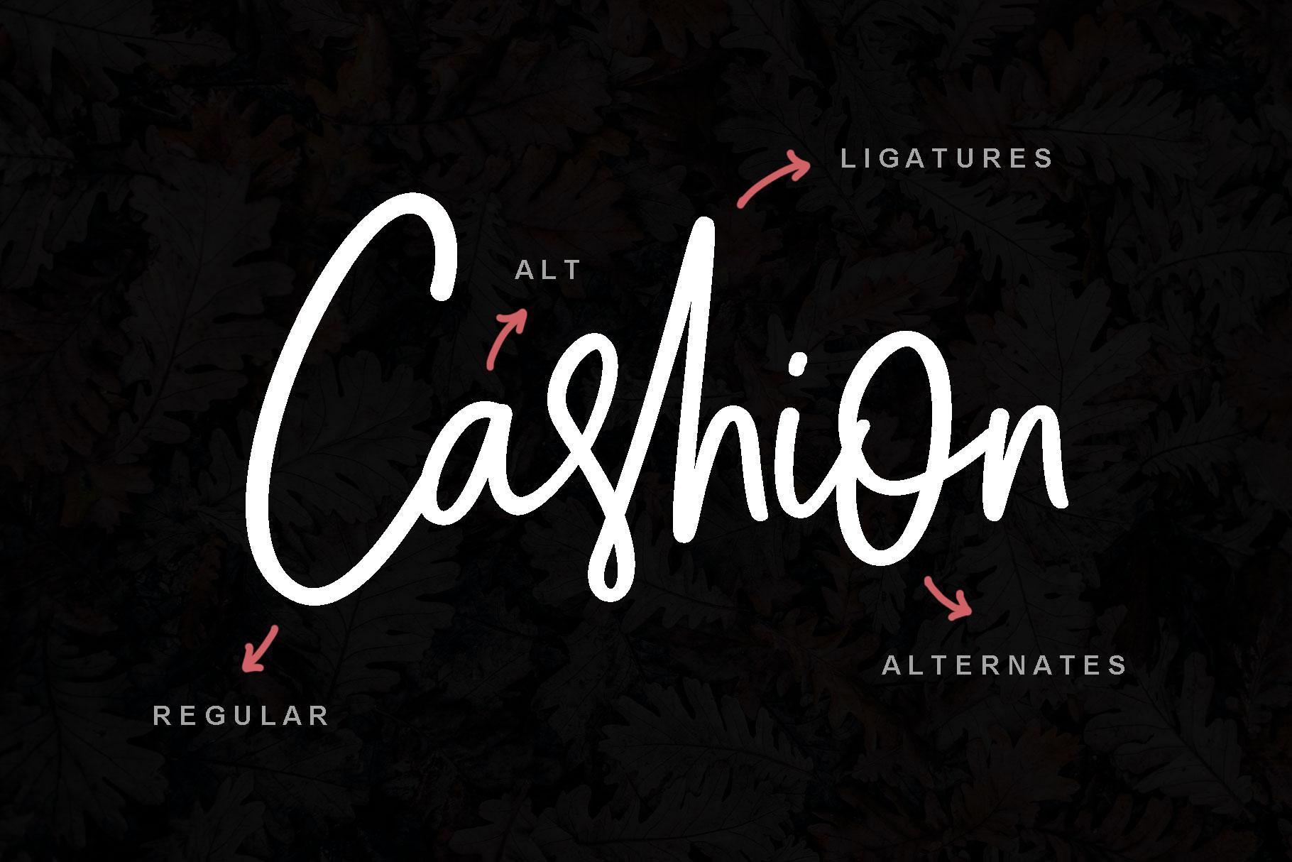 Cashion Script example image 6