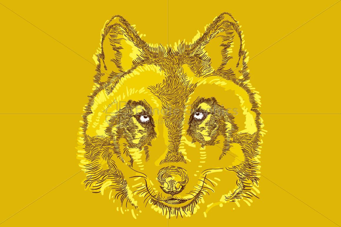 Wolf - Wild Animal  example image 2