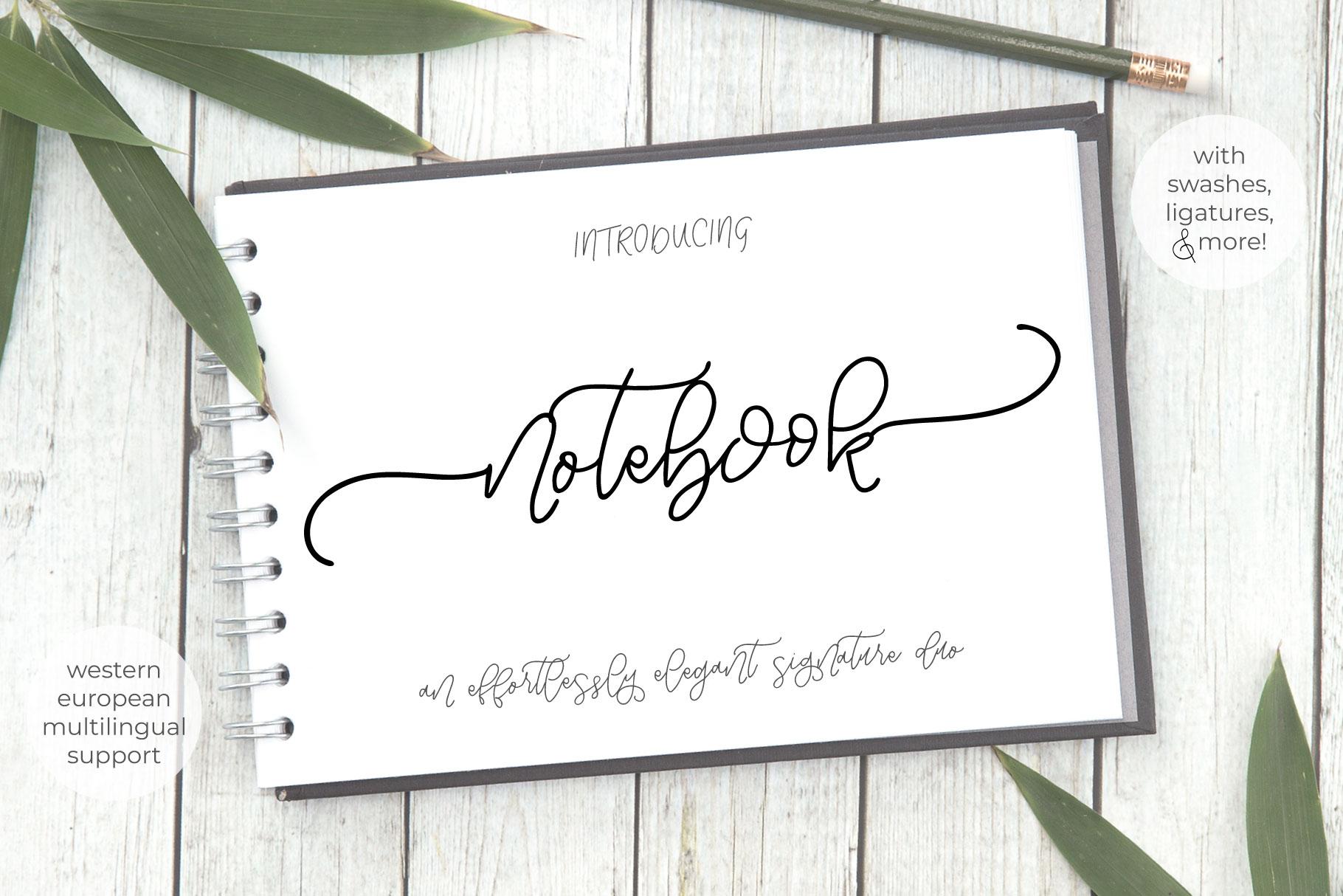 Notebook Script example image 1
