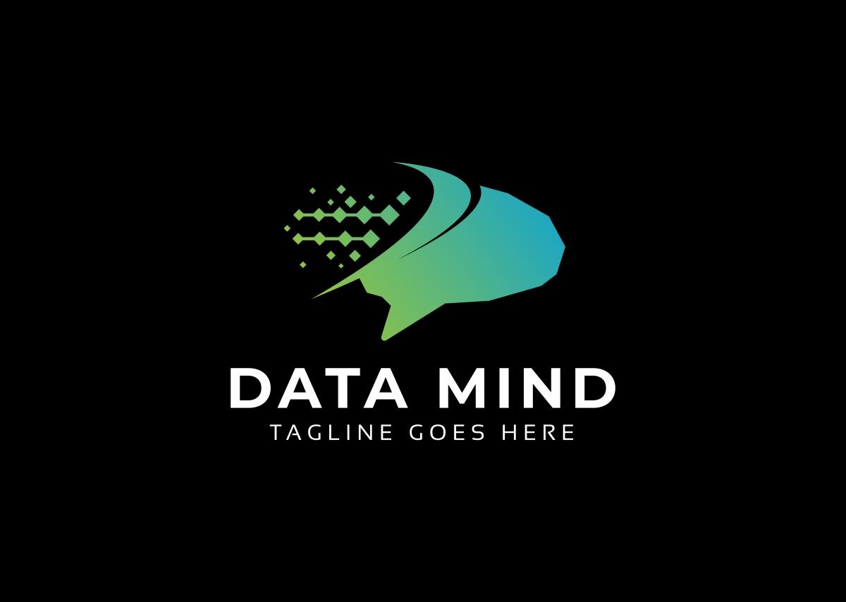 Data Mind Logo example image 2