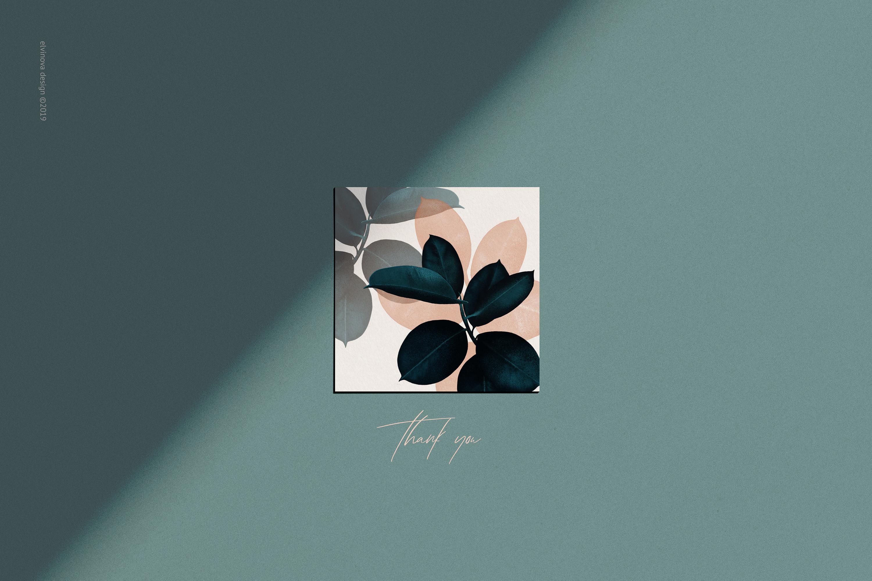 Ficus plant art & textures example image 12