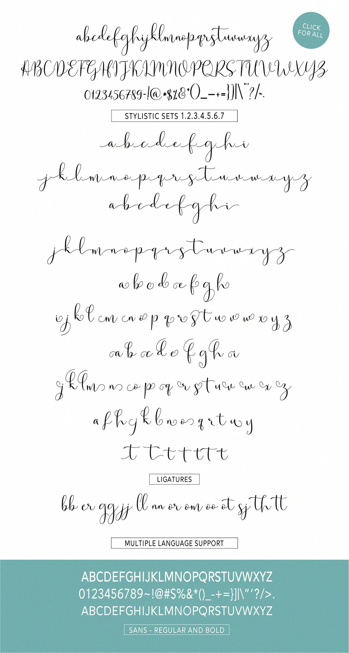 Solidar Font Family example image 8