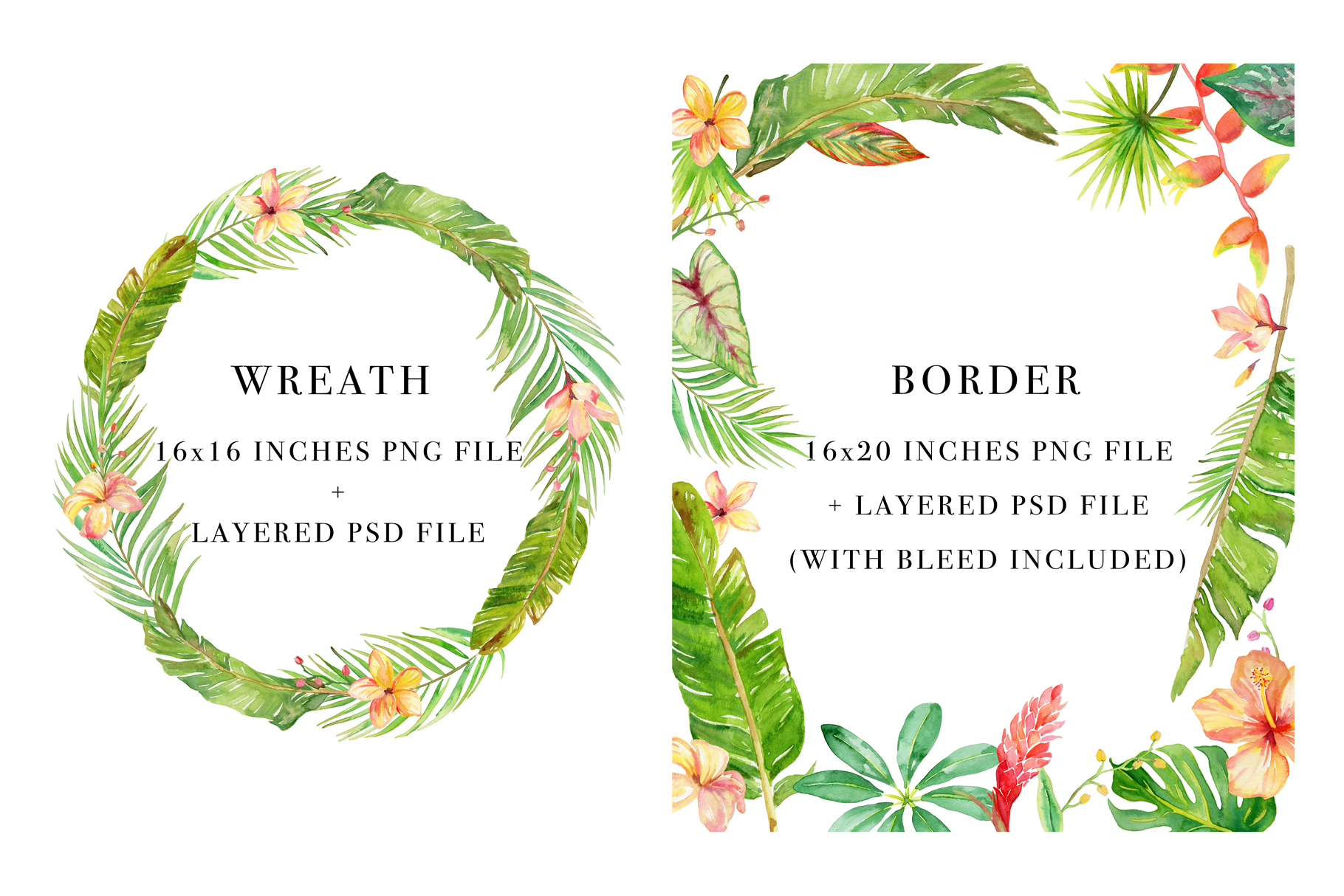 Tropical Botanicals Watercolor Set example image 4
