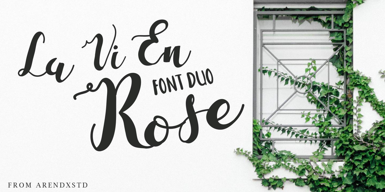 The Massive Bundle Of 46 Beautiful Fonts example image 25