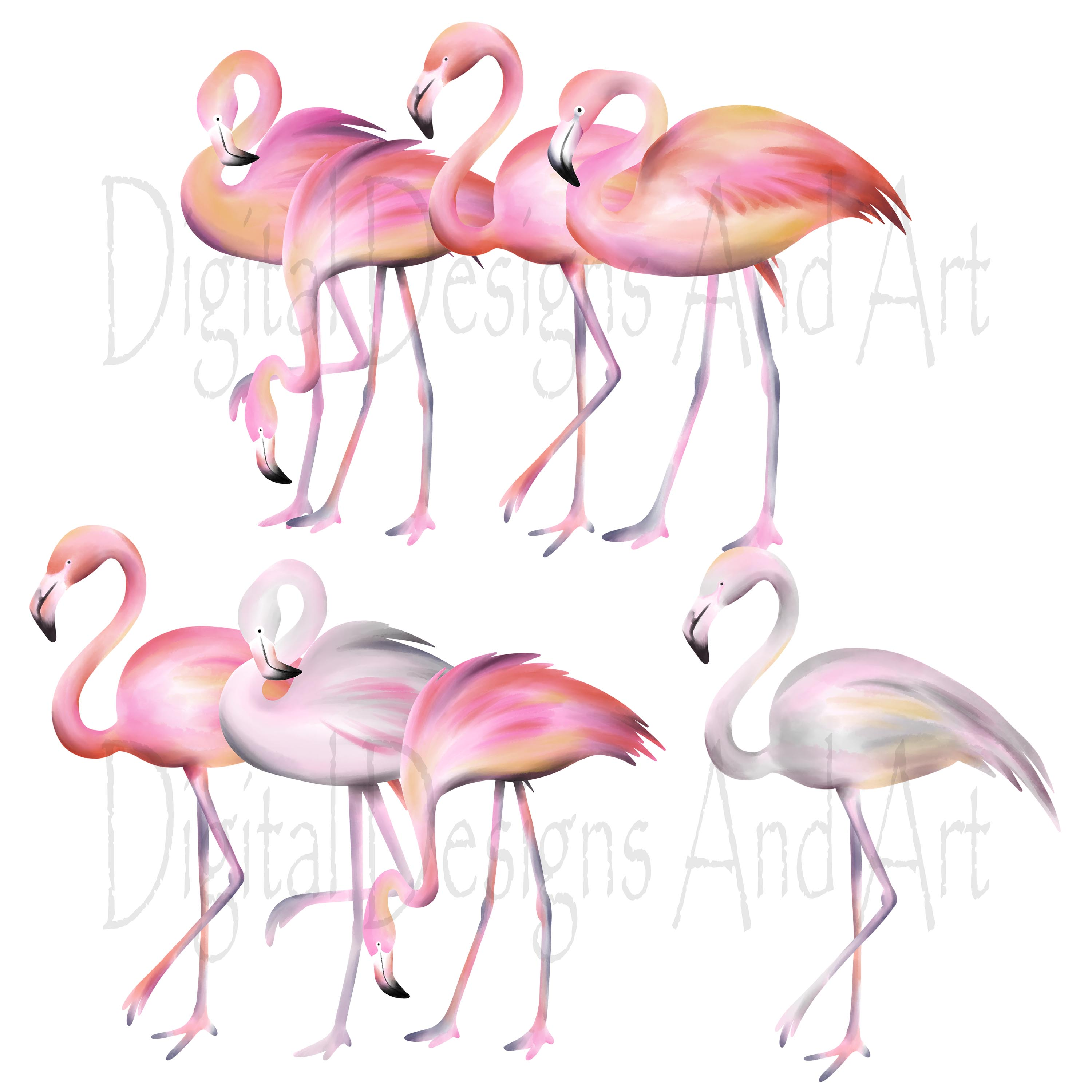 Pink flamingo clipart example image 2