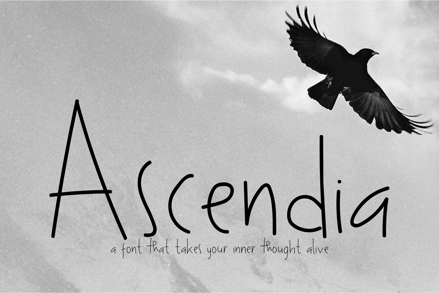 Ascendia example image 1
